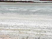 agua Lagunas Villafranca desciende hasta niveles mínimos