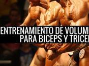 Entrenamiento Volumen para Bíceps Triceps Todas