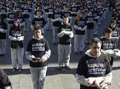 ARTÍCULO: Activismo defensa seres sintientes