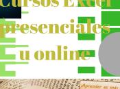 Cursos Excel presenciales online