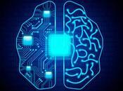 está modelando nueva partir cerebro humano