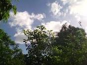 Alarma ciclónica Manatí
