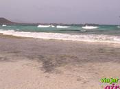 Playa Médano, dunas Corralejo Fuerteventura