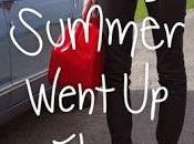 Summer Went Flames Reseña
