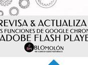 Revisa Actualiza Funciones Google Chrome Adobe Flash Player
