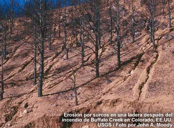 Erosión por surcos