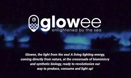 Bio Energía: Bacterias que Iluminan Ciudades