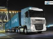 Fenatport integra organización nueva cooperativa transportistas portuarios