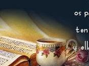 Cómo Estudiar Interpretar Biblia?: Pautas Para Discernir Escrituras