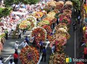 Color infinito Feria Flores Medellín