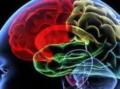 Nuevas Perspectivas sobre control Memoria