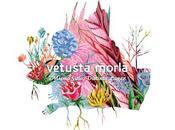 Vetusta Morla saca nuevo disco: Mismo Sitio, Distinto Lugar