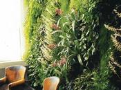 Deco: maravilla jardines verticales