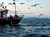 enmalle: arte pesca artesanal