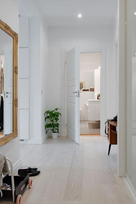 Siete pasos para cuidar tu chi interior en oto o paperblog for Cuidar hierbabuena en interior