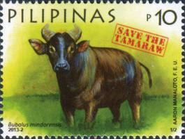 Un búfalo filipino en miniatura