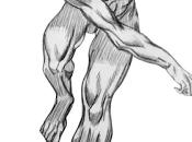 Anatomía movimiento