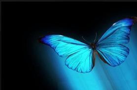 La leyenda de la mariposa azul