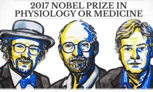 Premio Nobel de Medicina 2017 otorgado por las ideas sobre el reloj biológico interno