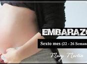 Sexto embarazo semanas
