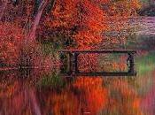 Estamos principios otoño...