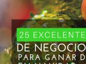 Excelentes Ideas Negocios para Ganar Dinero Navidad