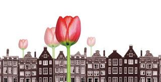 La Crisis de los Tulipanes ...