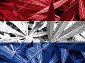 Educación Holandesa