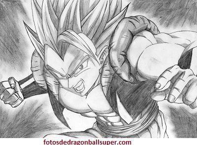 dibujos de fusiones de dragon ball z gogeta
