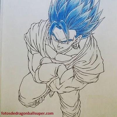 dibujos de fusiones de dragon ball z azul