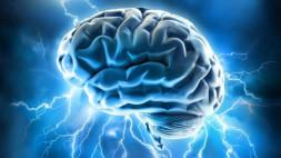 Los 'más inteligentes' están bajo riesgo de enfermedades mentales, afirman científicos