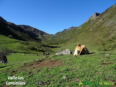 Ruta al Cornón por el Valle los Cereizales: Valle de Cereizales