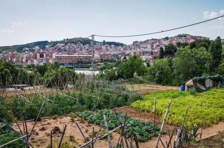 Un paseo por la historia en el barrio de Horta en Barcelona