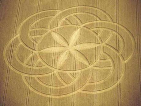 El símbolo de 'la Semilla de la Vida' contiene los secretos de los 7 días de la creación