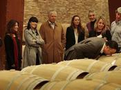 Escapada recomendable: Rioja época vendimia