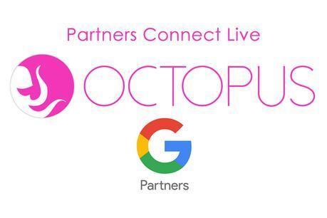 octopus conectará a sus clientes con google. ¡sé parte de este encuentro!