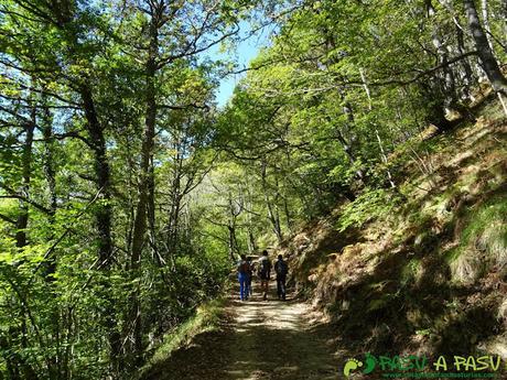 Ruta Vega Pociellu y Bosque Fabucao: Subiendo a la Ablanosa