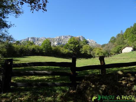 Ruta Vega Pociellu y Bosque Fabucao: Vista del Cantu del Osu