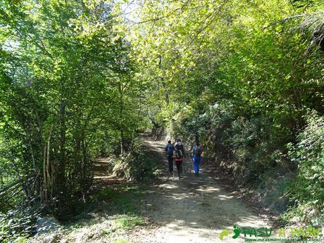 Ruta Vega Pociellu y Bosque Fabucao: Desvío a la derecha en el camino