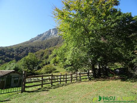 Ruta Vega Pociellu y Bosque Fabucao: Saliendo de la Ablanosa hacia la Vega Pociellu