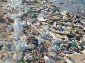 empresas culpables gran parte plástico océanos