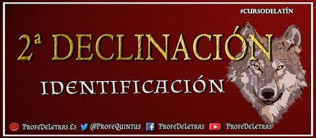 Segunda Declinación latina: Enunciación e identificación