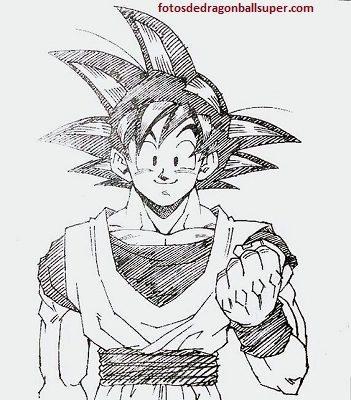 Imagenes Faciles Para Dibujar De Dragon Ball Z Para Pintar Paperblog