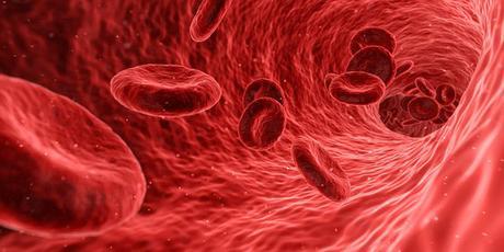 ''Con una muestra de sangre materna podemos descartar algunos síndromes como el de Down''