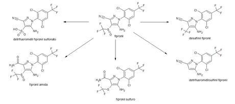 productos de hidrólisis del fipronil