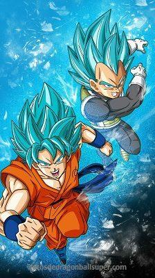 goku fase dios vs vegeta fase dios blue