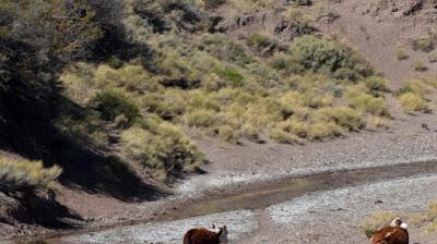 Santo Tomás: el pueblo de la mejor agua necesita un poco de lluvia