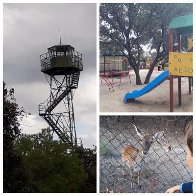 Comer con niños en El Pardo: El Torreón y el Jardín de Somontes