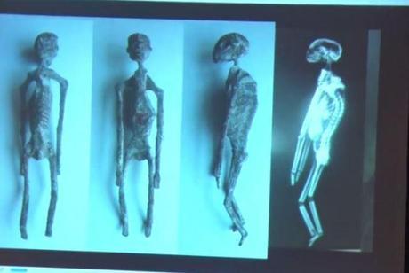 El 2 análisis de las momias alienígenas de Nazca revela que son REALES