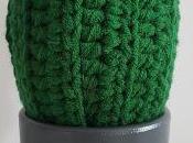 Cactus fusión